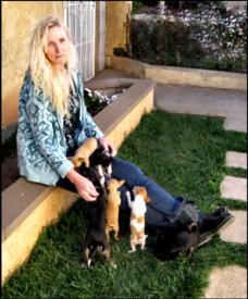 Teresa's AKC Chihuahuas